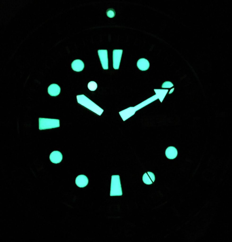 Seiko Turtle 2016 Nightshot