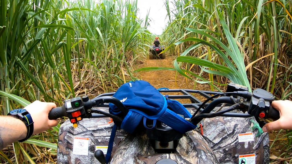 Quad Tour Bigfoot Adventure Mauritius Zuckerrohrfelder