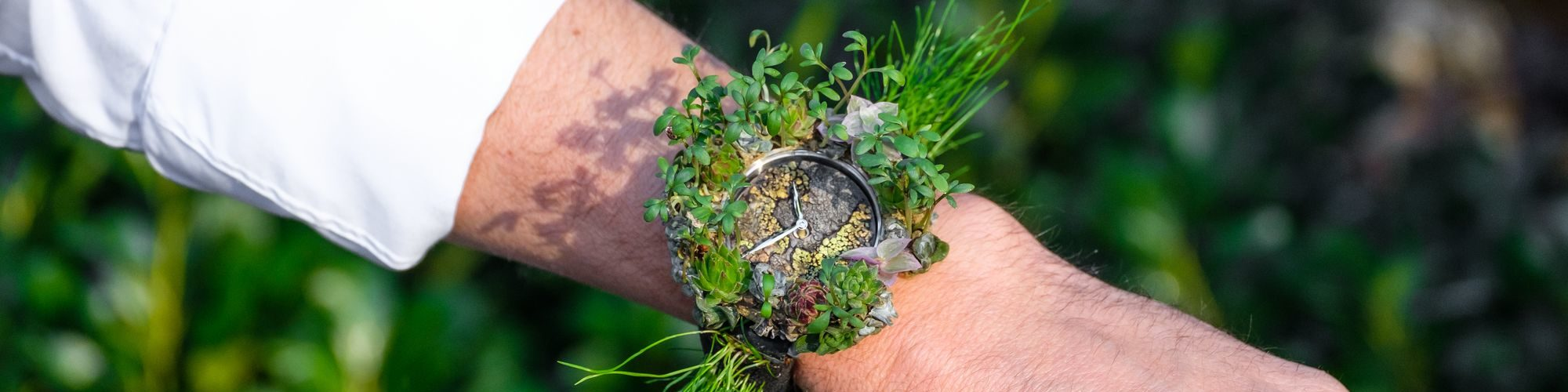 Moser Cie Nature Watch